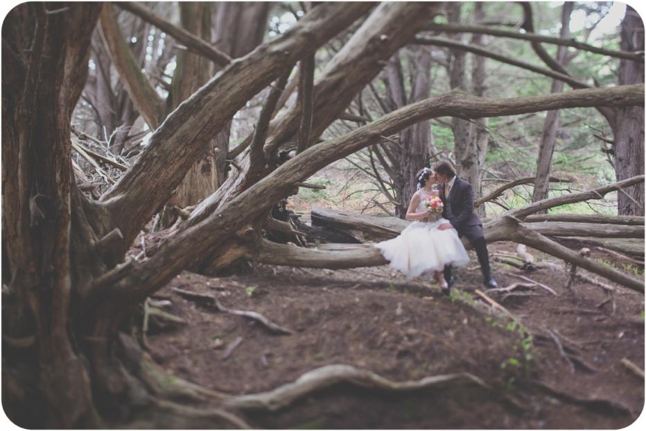 Woods, Big Sur, Elopement, Trees, Pfeiffer Beach, Wedding