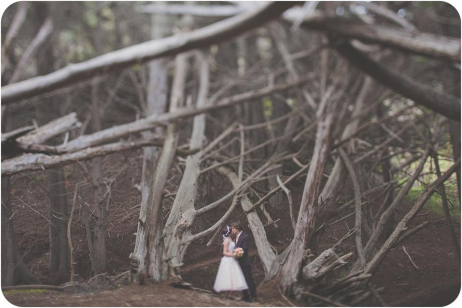 Big Sur, Trees, Wedding, Couple, Elopement, Cypress trees, Pfeiffer Beach, Redwoods