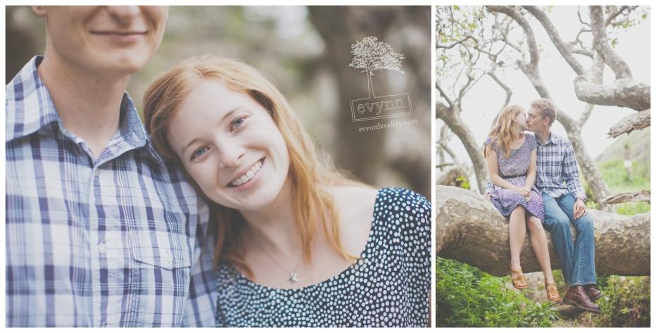 Trees, Big Sur, Engagement