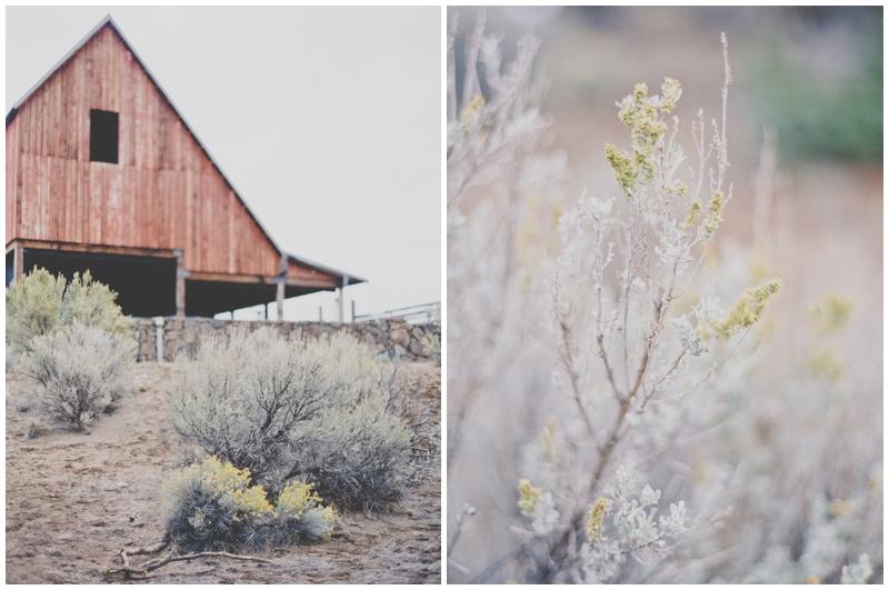 Bend, Oregon, Film, Photographer, Weddings
