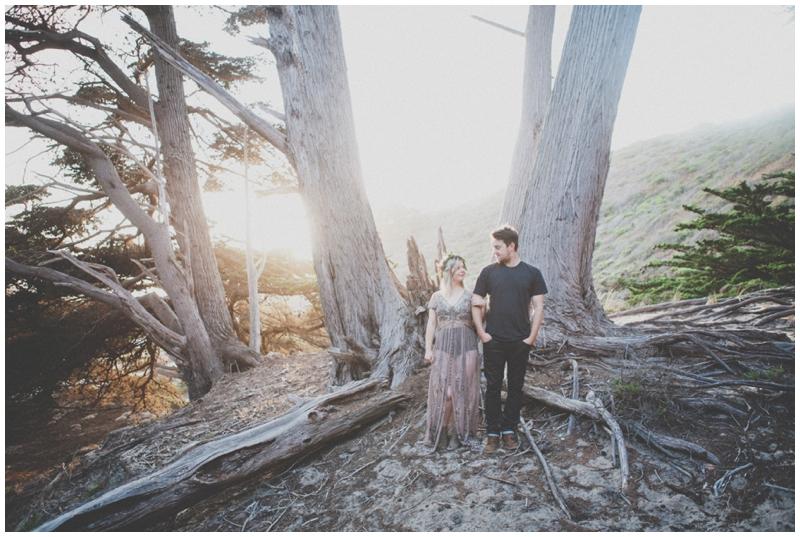 Big Sur, Engagement, Pfeiffer Beach, Woods