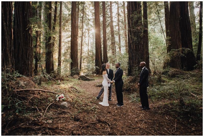 Redwoods, Big Sur, Elopement, Glen Oaks, Forrest